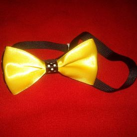 Puppy Love Designer Bow Wow Collar for Toy and Small Breed Dogs, small