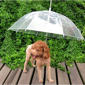 Puppy Love High Quality Transparent Pet Umbrella for Small and Medium Dogs, universal