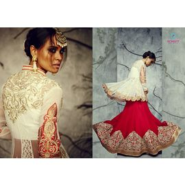 Pure Bhagal Puri Silk Cream Red mix Lehenga Choli
