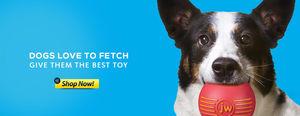 Dog Fetcher