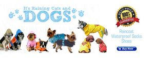 Rainy Wear for Dogs