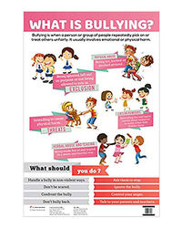 Charts: What Is Bullying?