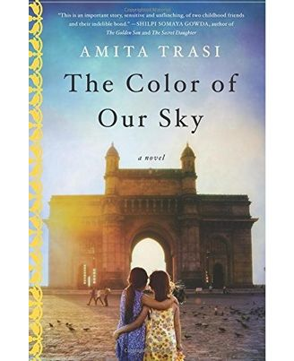 The Color of Our Sky: A Novel