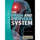 Brain and The Nervous System
