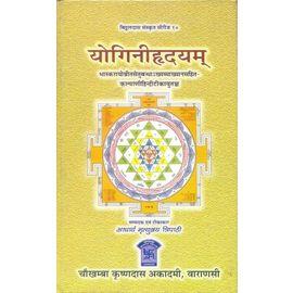 Yoginihridyam By Acharya Mrityunjay Tripathi