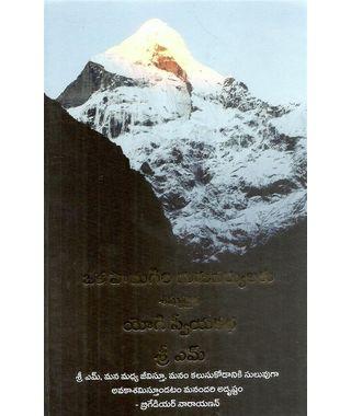 Oka Himagiri Guruvaryulaku Sishyudaina Yogi Swiya Katha
