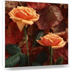 Orange Rose Pair, 20 x 20 inches