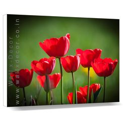 Red Tulips - Canvas Art - 14 x 18 inch