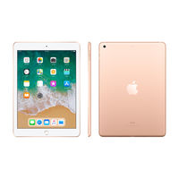 "Apple iPad 6th Gen 9.7"" Wi-Fi with FaceTime, 128 GB,  Gold"
