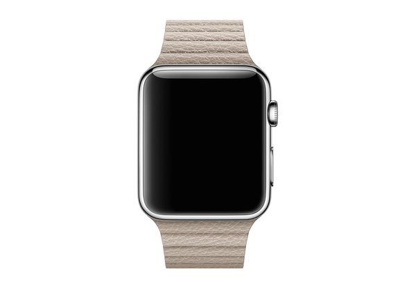 Apple 42mm Stone Leather Loop, Medium