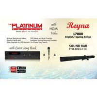 Platinum Reyna+ 1 cord Mic+ Soundbar