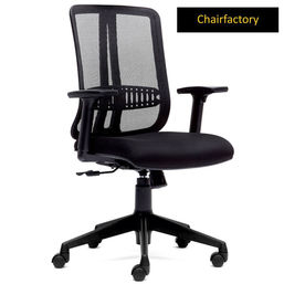 Patrik ZX MB Ergonomic Chair for Back Pain
