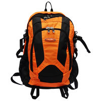 Rhysetta DBP-15 Backpack,  orange