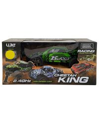 YOUJIE TOYS 2.4 Ghz Radio Control Cheetah King, Green and Black