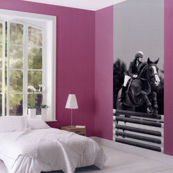 Elementto Mural Wallpapers Polo Mural Design Wall Murals SOW 2238-15-47-1mural, dark grey