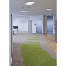 Floor Carpet and Rugs Hand Tufted AC ConceptAbstract Green Carpets Online - SC-05-L, 3ftx5ft, green