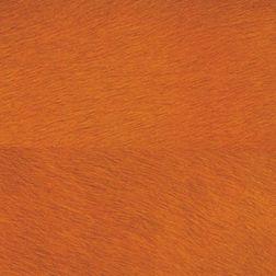 Elementto Wallpapers Animal Design Home Wallpaper For Walls, orange