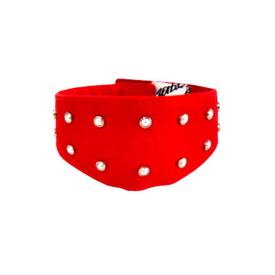 Zorba Designer Fancy Collar with Studded Pearls for Dogs, large
