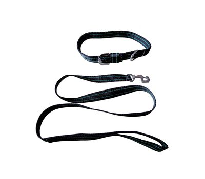 Kennel Nylon Collar with Lead Set for Medium to Large Dogs, red