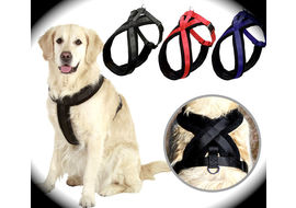 Puppy Love Padded Body Harness for Large and Giant Breed Dogs, x large , blue