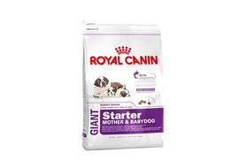 Royal Canin Giant Starter Dog Food, 15 kgs