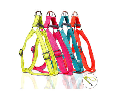 Puppy Love Neon Reflective Step-in Harness with Leash for Small Breed Dogs, neon orange, small