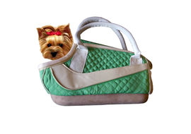 Nunbell Stylish Designer Travel Pet Carry Bag, green