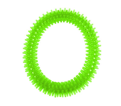 Nunbell Nylon Spiked Play Ring for Dogs and Cats, bright green, large