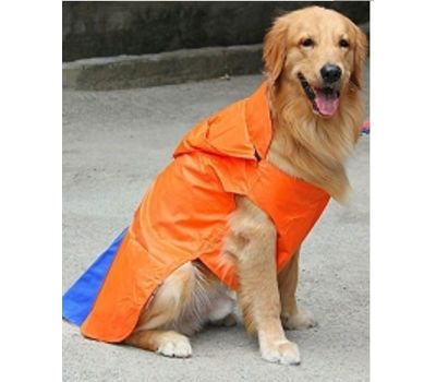 Canes Venatici Double Protection Premium Raincoat for Small Dogs, blue, 16 inch