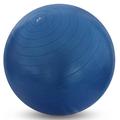 Nivia ab-580 65 cm Gym Ball (Blue)