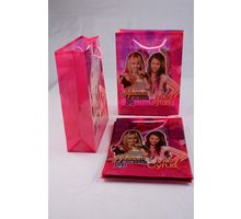 Big Golden Recollect Bag - Set of 12
