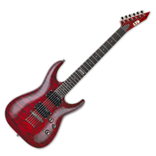 ESP, Electric Guitar, LTD MH Series, MH-100 -See Through Black Cherry LMH100QMNTSTBC