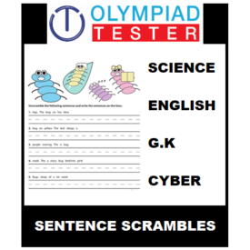 Class 5 Daily Sentence Scramble - 200 Printable Worksheets