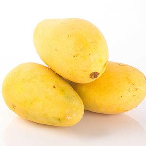 Banganapalli Mango, 1 kg