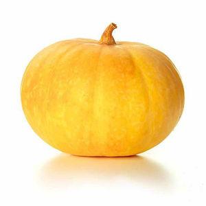 Pumpkin Yellow, 1 kg