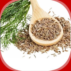 Fennel seeds / Sombu, 100 grams