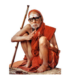 Sri Mahaperiyava, 6 inches