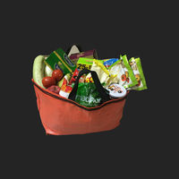 Bundle of 10 Shopping Bags, 45x20x32, 50 kg, 5: 1, Top: Open, Bottom: Flat