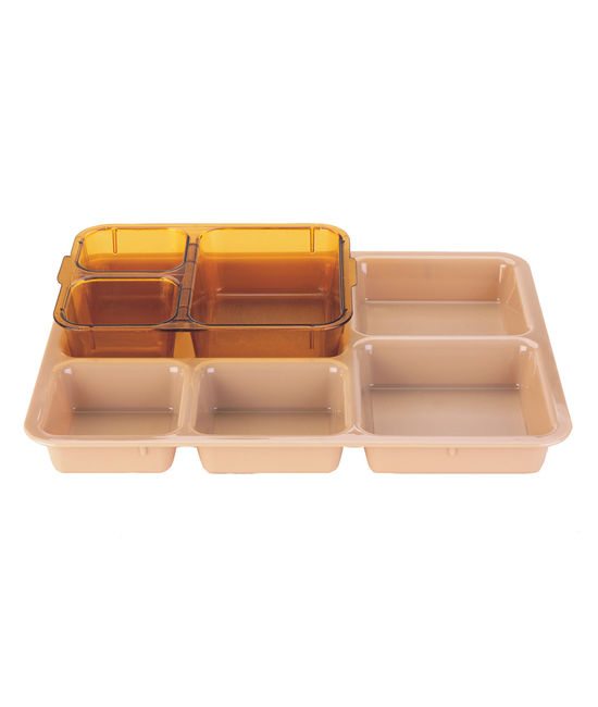 Meal Delivery Base Tray