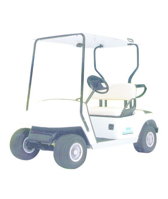 Electric Cart