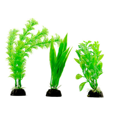 Aqua Culture Plant With Ceramic Base -Decoration Plant
