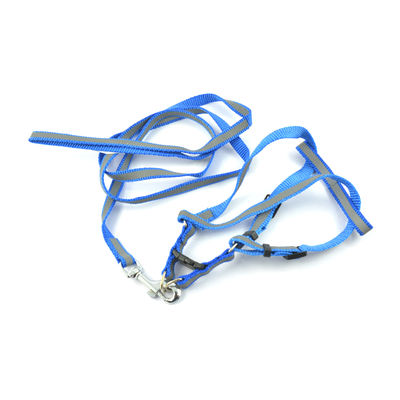 Easypets BESTMASTER Leash Collar Harness Set (Small) (Blue)
