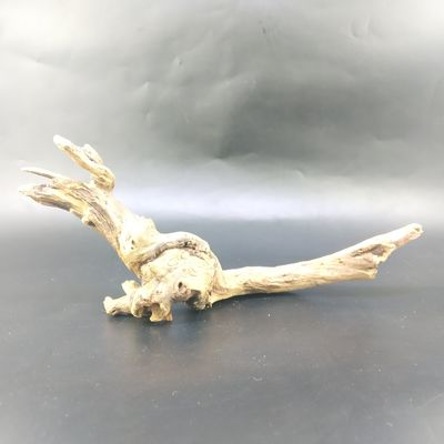 Ocean Free Driftwood Root Style 10 - For Nano Tanks
