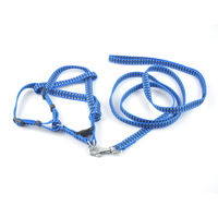 Easypets BESTMASTER Dog Leash with Collar (Small) (Blue)