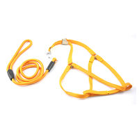 Easypets SMARTCHOICE Nylon Strap Dog Harnesses and Leash Set (Small) (Yellow)