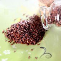 Hemianthus callitrichoides Cuba Seeds - 5 Grams