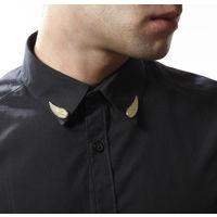 Golden wings Collar Pin