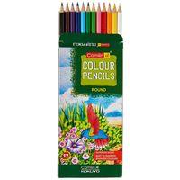 Camlin Colour Pencils (12 Shades, Full Size)