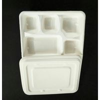 Ecoware 100% Bio-degradable 5 Compartment Plate (Pack of 50)
