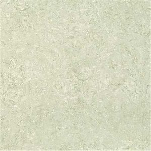KAJARIA 600 X 600 VITRIFIED PREMIUM DOUBLE CHARGE - 6030